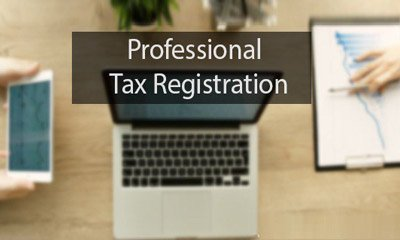 pro-tax