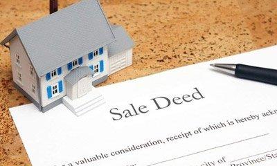 sale-dead